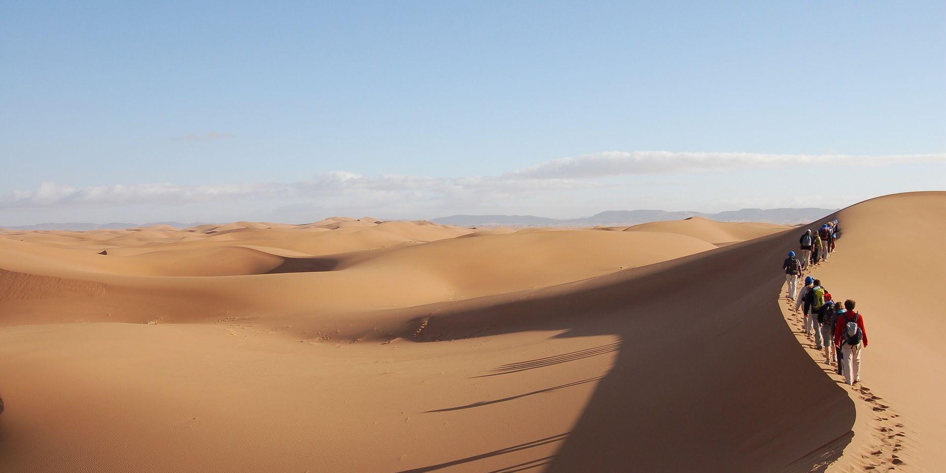 Sahara dune trek